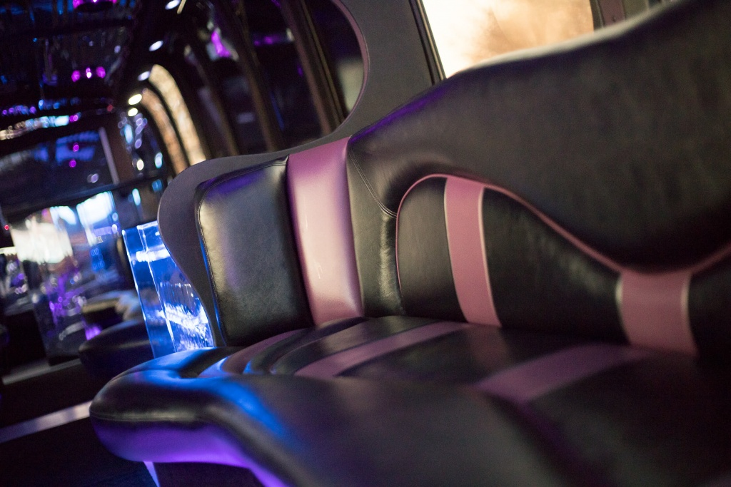 Limo Bus (Interior, Curved Seating, View 2)